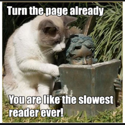 slowreadercat